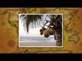 География. 7 класс. Урок 34. Особенности природы Океании.
